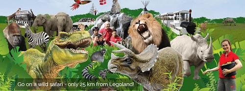 zoo,safari