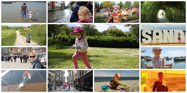 wszedobylscy,2015