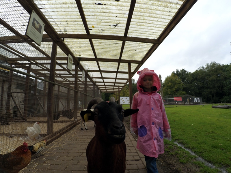 Co robić z dzieckiem w Groningen