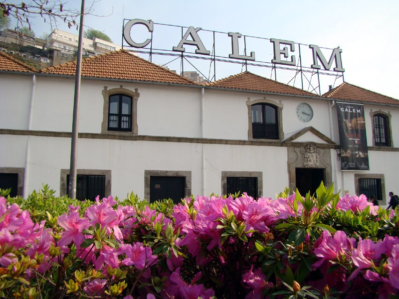 Winnice w Porto